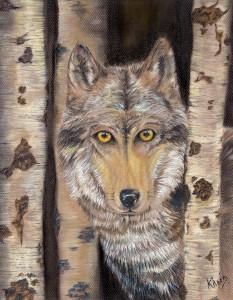 Khris wolf